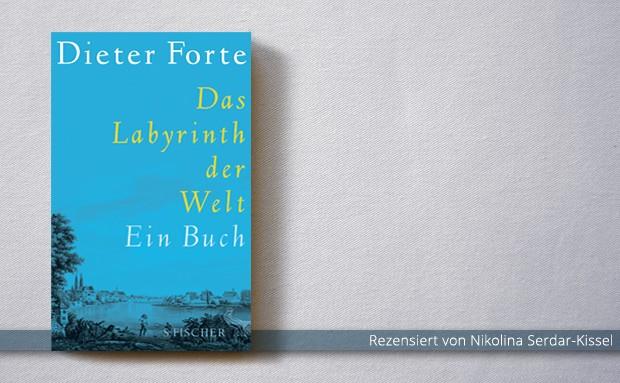 Dieter Forte: Das Labyrinth der Welt. Ein Buch